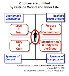 Charismatic Leader : Bounded Choice